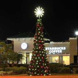 Commercial Christmas Spiral Trees
