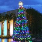 16' RGB Animated Majestic Mountain Pine Christmas Tree