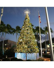 14' Majestic Tree-5mm Wide Angle Conical LED-Warm White