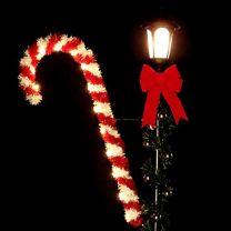 4 1/2' Candy Cane, LED