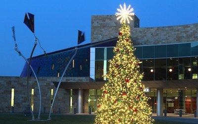 The Magic and Mystique of Commercial Outdoor Christmas Trees