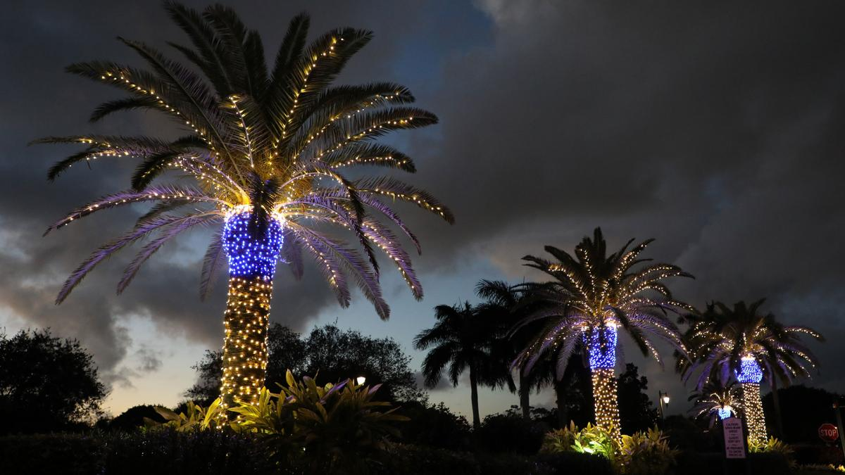 Light the Night with Holiday Blue and White