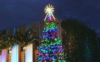 RGB Animated Majestic Mountain Pine: The Ultimate Animated Christmas Tree