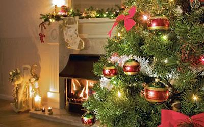 Christmas Tree Care: Keep it Pretty, Keep it Safe