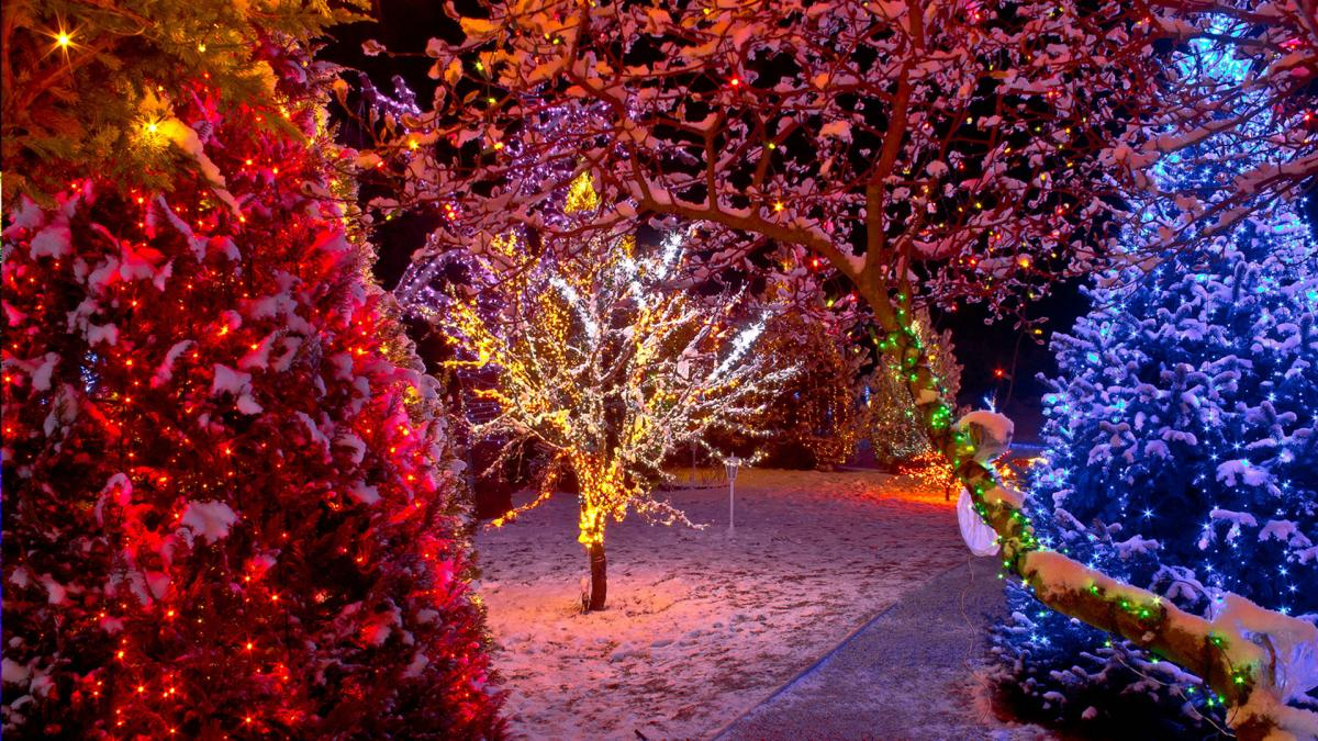 The Top 6 Mistakes People Make When Buying LED Christmas Lights