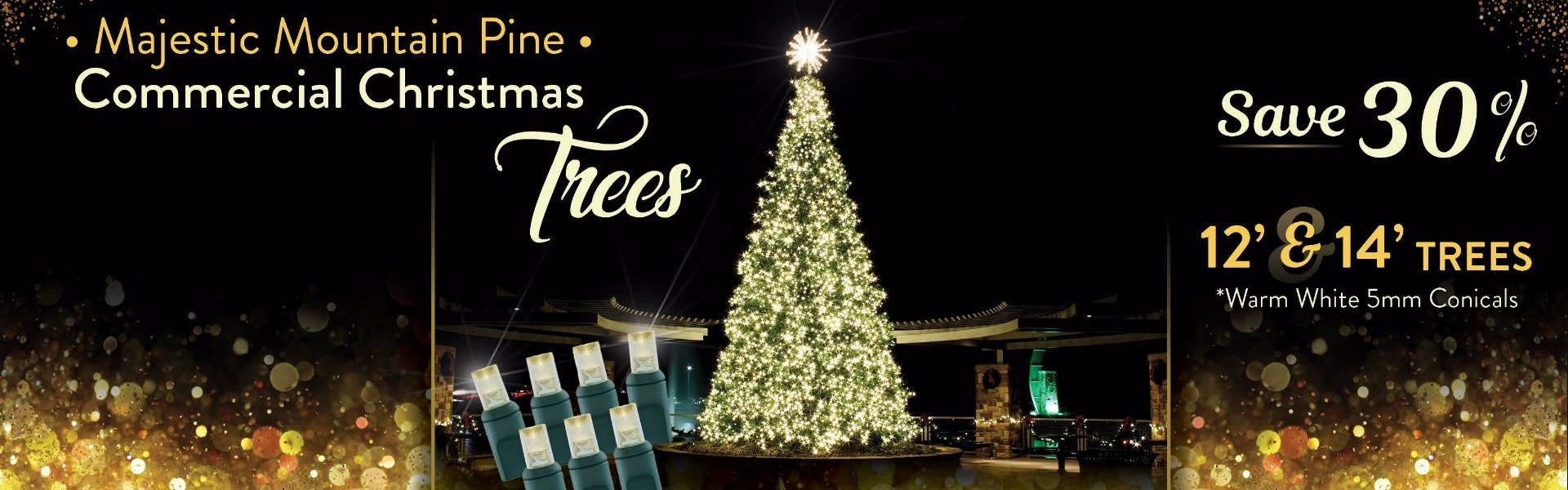 Warm White 5mm Majestic Mountain Pine Commercial Christmas Trees Sizes 12' and 14' on sale. Save 30%