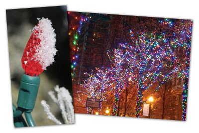 LED Christmas Lights - Christmas Designers
