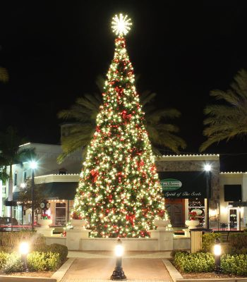 Commercial Christmas Tree