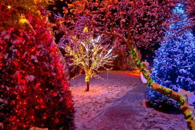 5 mm Wide Angle Conical LED Christmas Lights