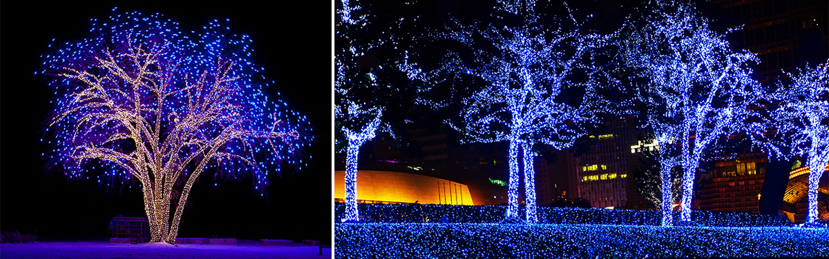blue light displays for autism