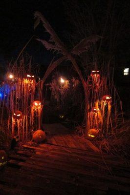 Pumpkin Entryway