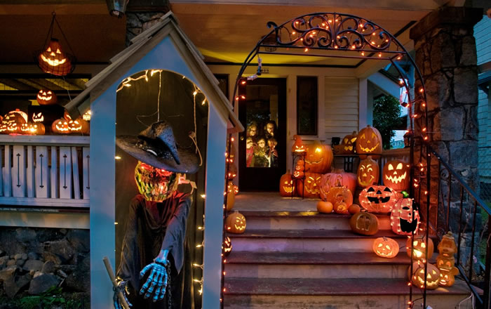 Pumpkin Takeover