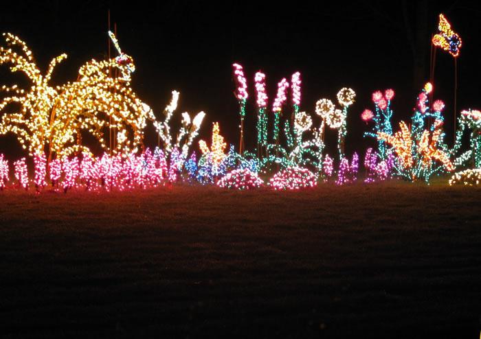 Creative Christmas lighting