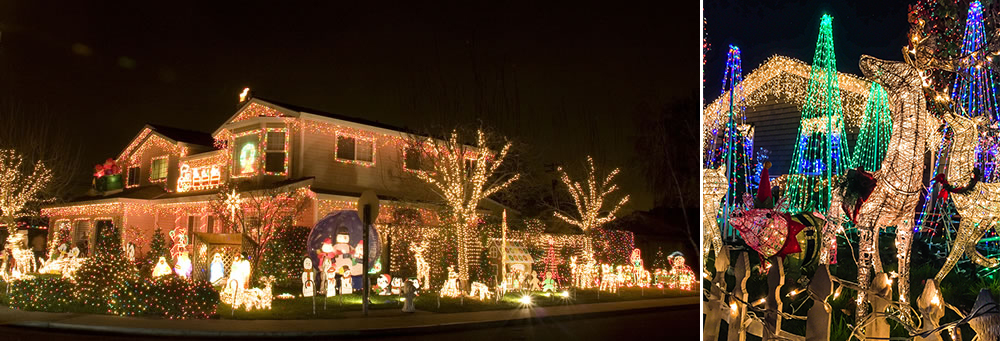 win a christmas light contest