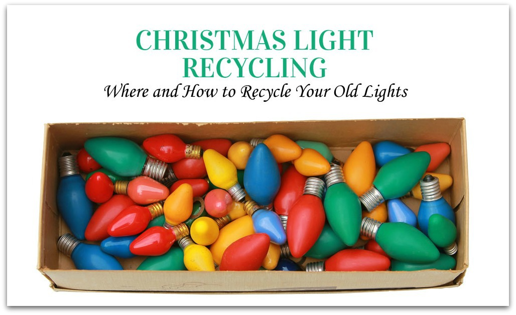 Christmas light recycling