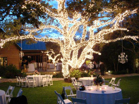 Outdoor Wedding tree lighting