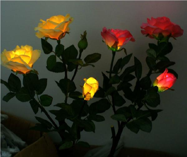 LED Rose Lights