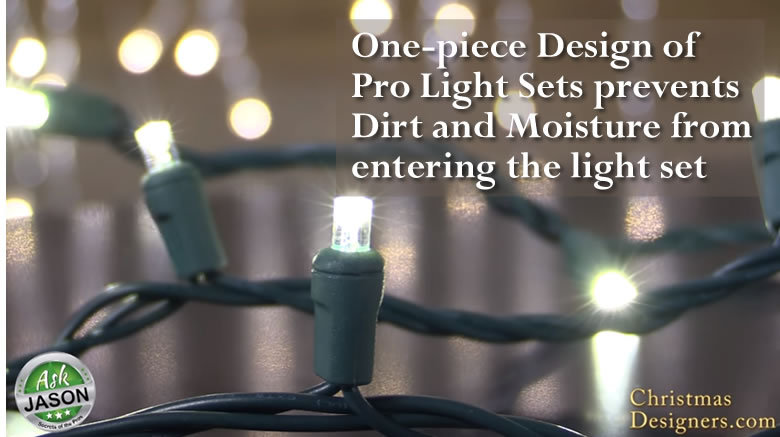 One piece Pro LED Christmas lights