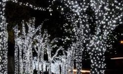 What is the Most Popular Style of LED Christmas Light?