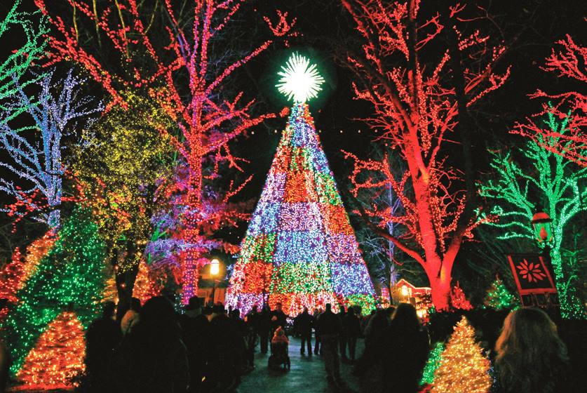 Branson City Mo Christmas Light Display