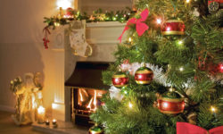 Christmas Tree Care: Keep it Pretty, Keep it Safe