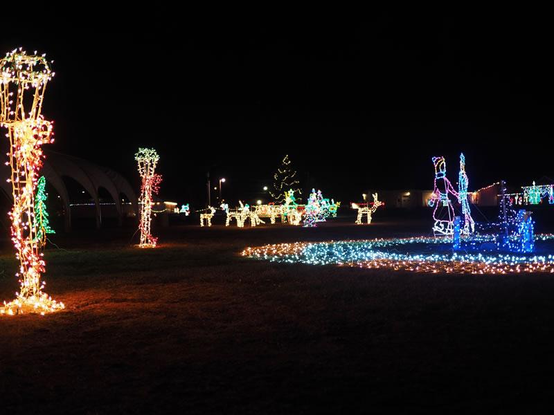 Night Photography of Christmas Lights