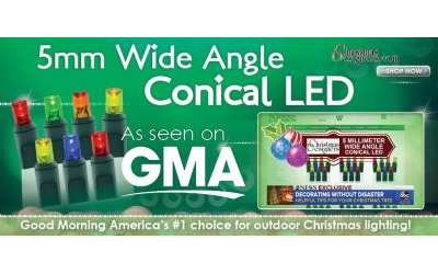 Voted Best Outdoor Christmas Lights From GMA and The SweetHome