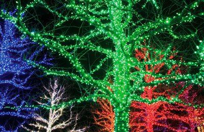 Vivid LED Christmas Lights