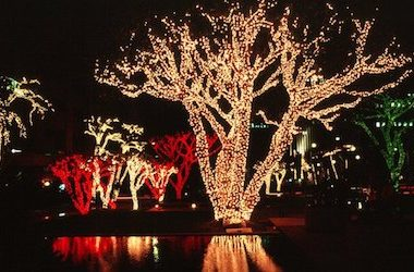 How Much Electricity Do Christmas Lights Use.How Much Electricity Do Led Christmas Lights Use