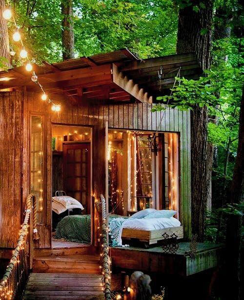 Shed & Tree House lights