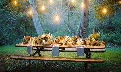 Thanksgiving in Lights