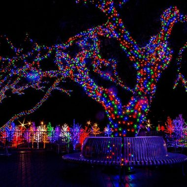 Use Color Strategically in Your Commercial Christmas Light Displays