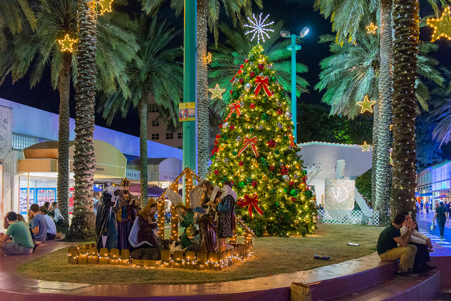 The Reasons Behind Our Christmas Decorations - Why We Go Nuts for Lights, Trees and Tinsel