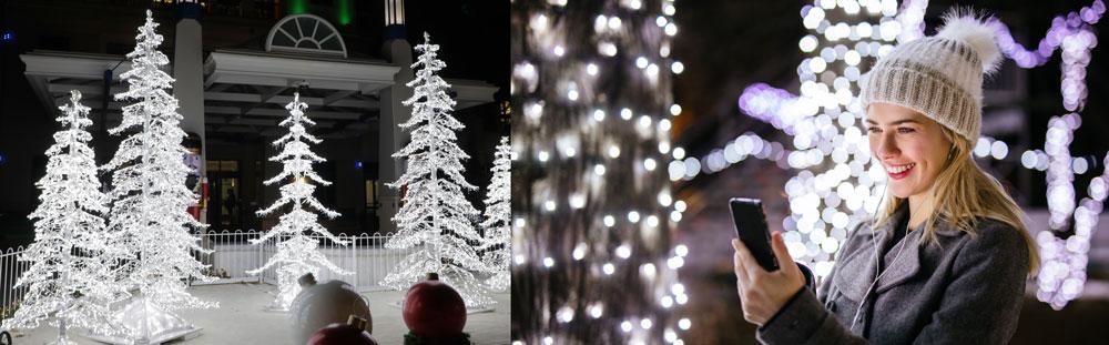 pure white led christmas lights