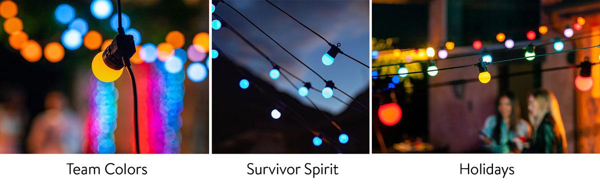 color festoon lights for outdoor parties